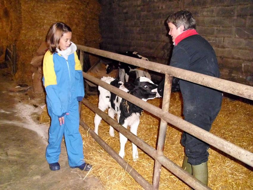 Así es Utxunea Baserria y su Casa Rural, y así ha sido siempre. Hoy 8 de marzo las mujeres y hombres de Utxunea lo celebramos trabajando con las vacas y terneros. Y preparando la Casa Rural para las personas que nos visitan cada fin de semana.
