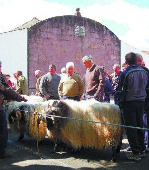 Desde Casa Rural Utxunea disfrutarás de la Feria Primavera en Elizondo